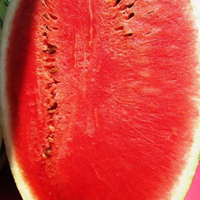 watermelon-331284_1920